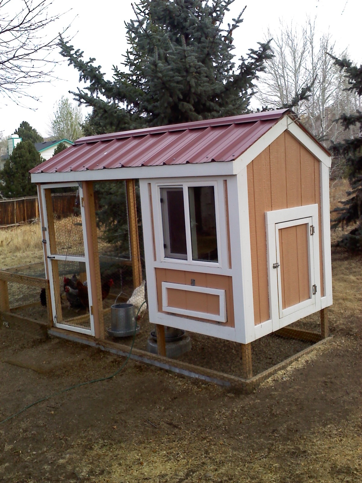 this year u0027s chicken coops for sale u2026so far u2026 he u0027s always inventing
